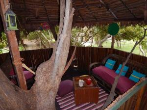 Jungle saloon