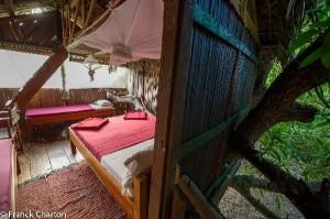 Junglehouse2